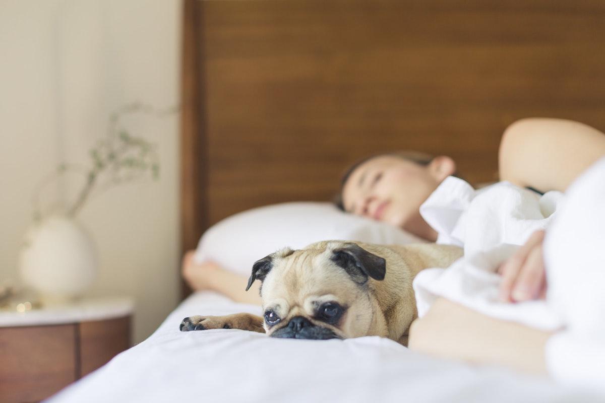 When Our Kids' Sleep Suffers…